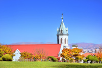 秋の函館 カトリック元町教会と紅葉の木々