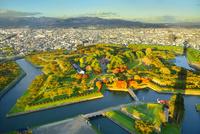 秋の函館 五稜郭タワーより紅葉の五稜郭公園