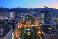 札幌,さっぽろテレビ塔より望む大通公園夜景