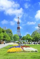札幌,新緑の大通公園とさっぽろテレビ塔