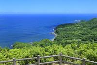 伊勢志摩,パールロードの箱田山園地から太平洋と鎧崎を望む