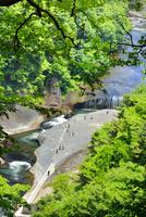 遊歩道より新緑の吹割の滝俯瞰