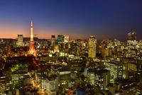 貿易センタービルより東京タワーとビル群夜景