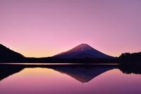 元旦・朝焼けの精進湖と逆さ富士 11076030740| 写真素材・ストックフォト・画像・イラスト素材|アマナイメージズ