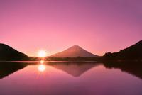 元旦・朝焼けの精進湖と逆さ富士に朝日 11076030747| 写真素材・ストックフォト・画像・イラスト素材|アマナイメージズ
