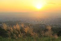 秋の若草山から望む奈良市街と夕日 11076030802| 写真素材・ストックフォト・画像・イラスト素材|アマナイメージズ