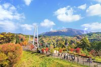 秋の九重夢大吊橋 11076030912| 写真素材・ストックフォト・画像・イラスト素材|アマナイメージズ