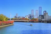 大川沿いの紅葉とビル群