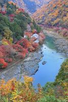 嵯峨野 亀山公園より望む嵐山の紅葉と保津川 11076030961| 写真素材・ストックフォト・画像・イラスト素材|アマナイメージズ