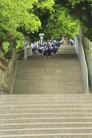 金刀比羅宮 参道の石段に女学生と参拝者