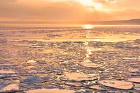 おーろら号より夕照のオホーツク海に蓮葉氷流氷帯