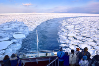 おーろら号より夕照のオホーツク海に蓮葉氷流氷帯と航跡