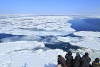 おーろら号とオホーツク海網走沖の流氷帯