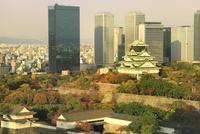 紅葉の大阪城と大阪ビジネスパーク夕景