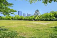 新緑の大阪城と遠足の小学生