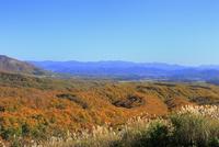 紅葉の蒜山高原 11076031357| 写真素材・ストックフォト・画像・イラスト素材|アマナイメージズ
