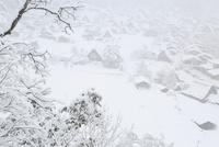 城山展望台より望む降雪の白川郷合掌造り集落 11076031373| 写真素材・ストックフォト・画像・イラスト素材|アマナイメージズ