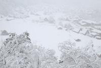 城山展望台より望む降雪の白川郷合掌造り集落 11076031416| 写真素材・ストックフォト・画像・イラスト素材|アマナイメージズ