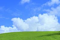 美瑛 緑の丘と入道雲