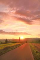 美瑛 道と夕日 11076031541| 写真素材・ストックフォト・画像・イラスト素材|アマナイメージズ