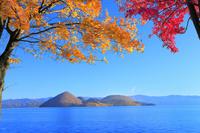 洞爺湖の紅葉(中島) 11076031614| 写真素材・ストックフォト・画像・イラスト素材|アマナイメージズ
