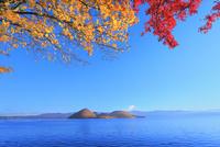 洞爺湖の紅葉(中島) 11076031615| 写真素材・ストックフォト・画像・イラスト素材|アマナイメージズ
