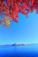 洞爺湖の紅葉(中島) 11076031617| 写真素材・ストックフォト・画像・イラスト素材|アマナイメージズ