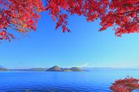 洞爺湖の紅葉(中島) 11076031618| 写真素材・ストックフォト・画像・イラスト素材|アマナイメージズ