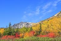 栂池自然園の紅葉と白馬岳 11076031773| 写真素材・ストックフォト・画像・イラスト素材|アマナイメージズ