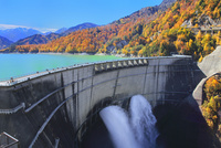 紅葉の黒部ダムと放水 11076031789| 写真素材・ストックフォト・画像・イラスト素材|アマナイメージズ