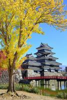 紅葉の松本城天守閣と内堀に狸橋