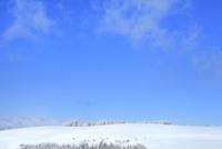 霧ケ峰高原 雪原と霧氷林 11076031848| 写真素材・ストックフォト・画像・イラスト素材|アマナイメージズ