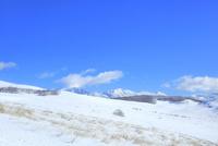 冬の霧ケ峰高原 11076031852| 写真素材・ストックフォト・画像・イラスト素材|アマナイメージズ
