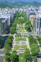さっぽろテレビ塔より望む新緑の大通公園