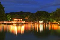 なら燈花会の奈良公園夜景