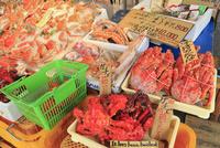 札幌 二条市場店頭に並ぶ冬の味覚各種カニ