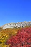 紅葉の鍵掛峠より望む大山