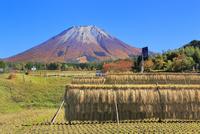 紅葉の大山と田園風景