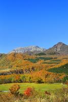 紅葉の鬼女台より望む大山と鳥ヶ山
