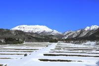 雪の大山と田園風景 11076031953| 写真素材・ストックフォト・画像・イラスト素材|アマナイメージズ