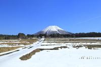 雪の大山と田園風景 11076031954| 写真素材・ストックフォト・画像・イラスト素材|アマナイメージズ