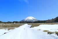 雪の大山と田園風景