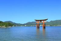 宮島 厳島神社の大鳥居