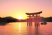 宮島夕景 厳島神社の大鳥居と夕日 11076032023| 写真素材・ストックフォト・画像・イラスト素材|アマナイメージズ