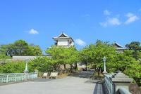 石川門口より新緑の金沢城菱櫓
