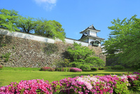 三の丸広場よりツツジ咲く新緑の金沢城菱櫓