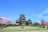 松本城本丸庭園の桜と天守閣に北アルプス(常念岳)