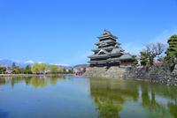 桜咲く松本城天守閣と内堀に北アルプス(常念岳)