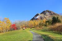 昭和新山と紅葉に道