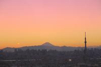 スカイツリーと都心のビル群に富士山と夕焼け